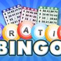 gratis bingo svenskabingo